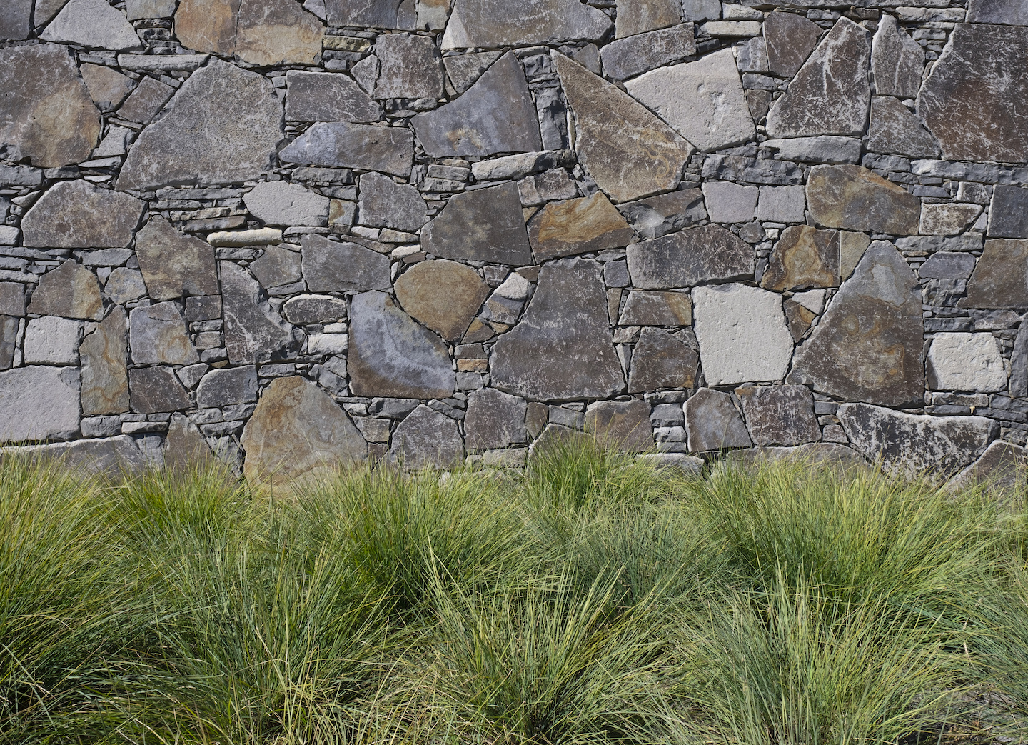 The green lomandra makes a great contrast with this grey stone wall.