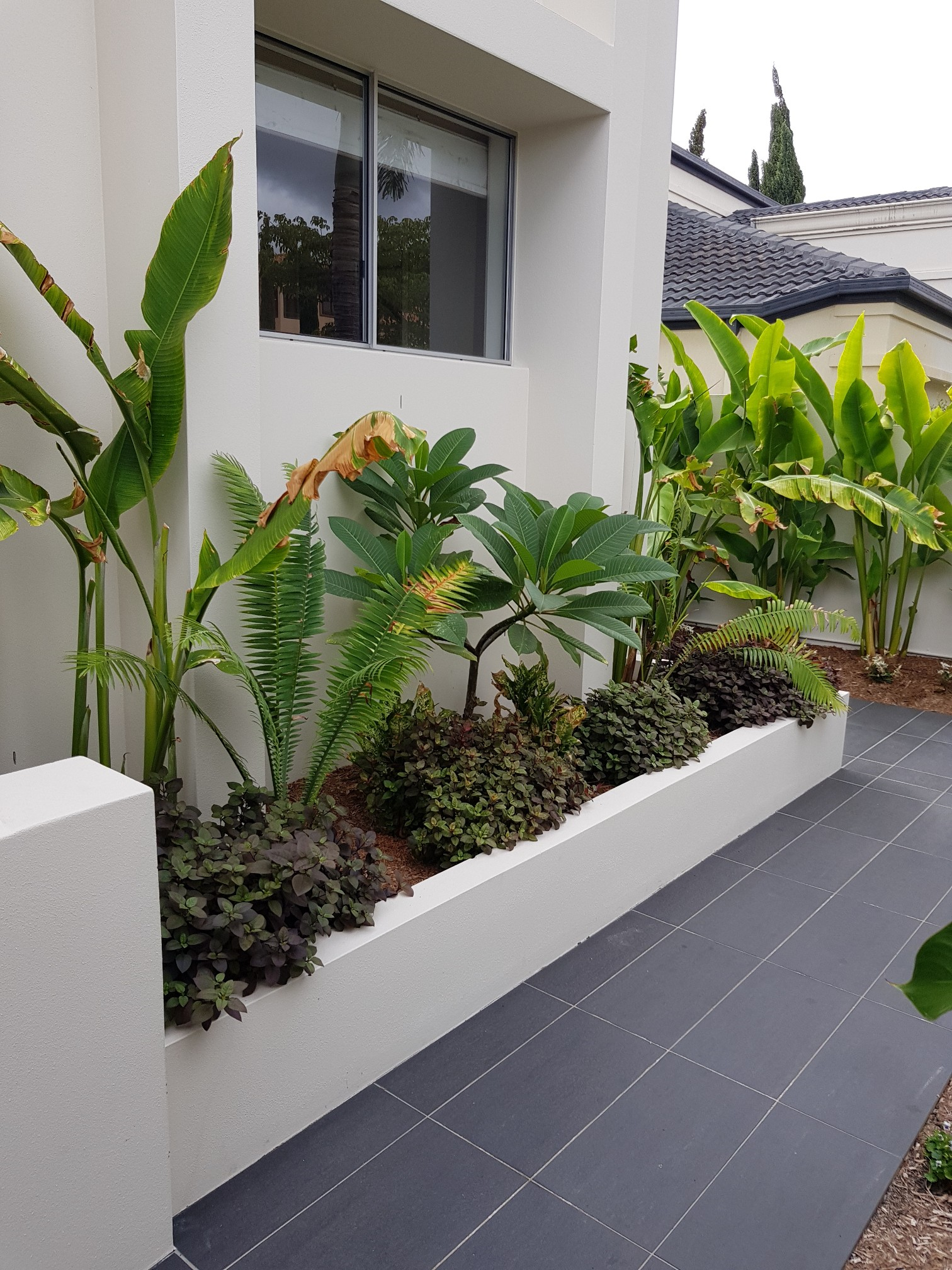 A well maintained Garden Bed