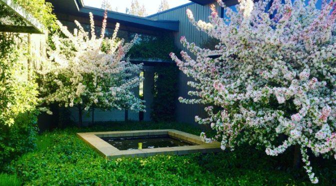 5 Small Garden Design Ideas For Melbourne Reds Landscaping