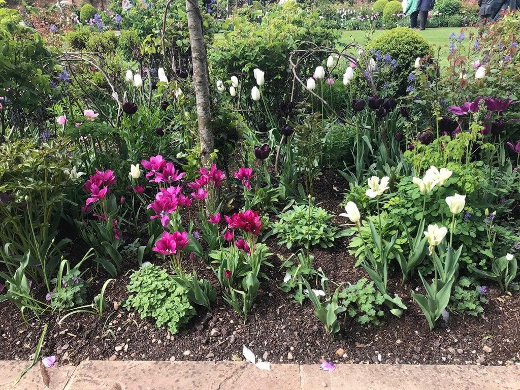 Garden Planning. Plant taller lighter coloured plants towards the back and shorter plants near the edge.