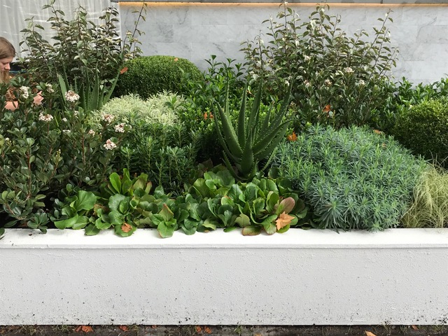 A very neat retaining wall with a layered garden design featuring succulents.