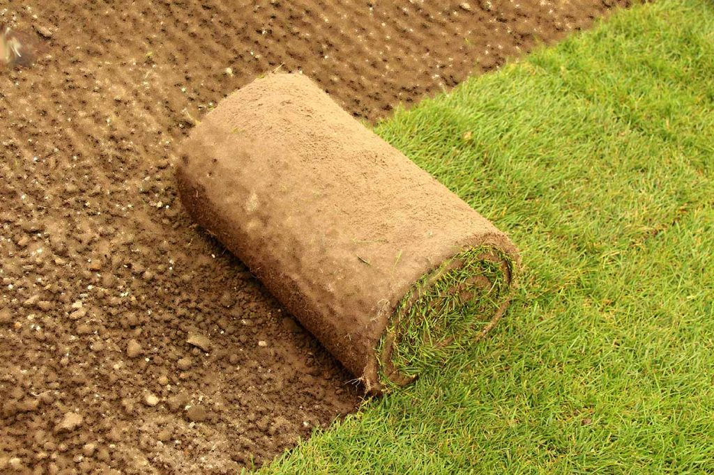 Regular garden maintenance of your new roll out lawn is essential. Daily watering for the first 4 weeks and top dressing of low spots is important..