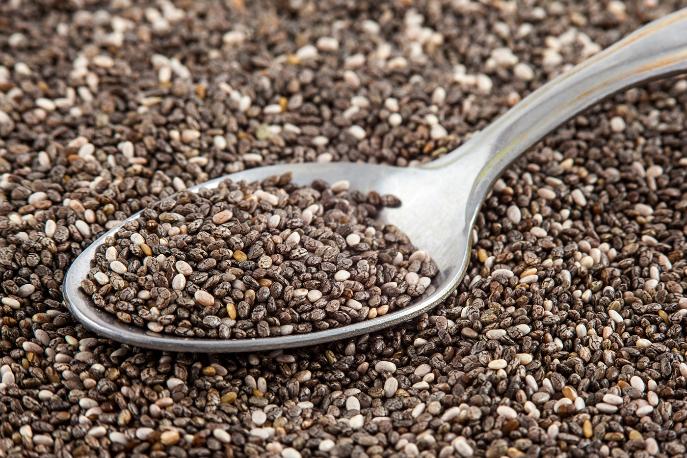 Chia seeds from Salvia Hispanica. Now an important food high in omega 3 fatty acid and fibre. Aztecs and Mayans used chia seeds as a source of energy.