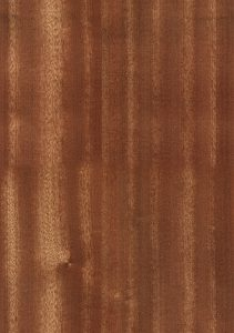 Furniture timber from eucalypts have a wide range of colours and textures.