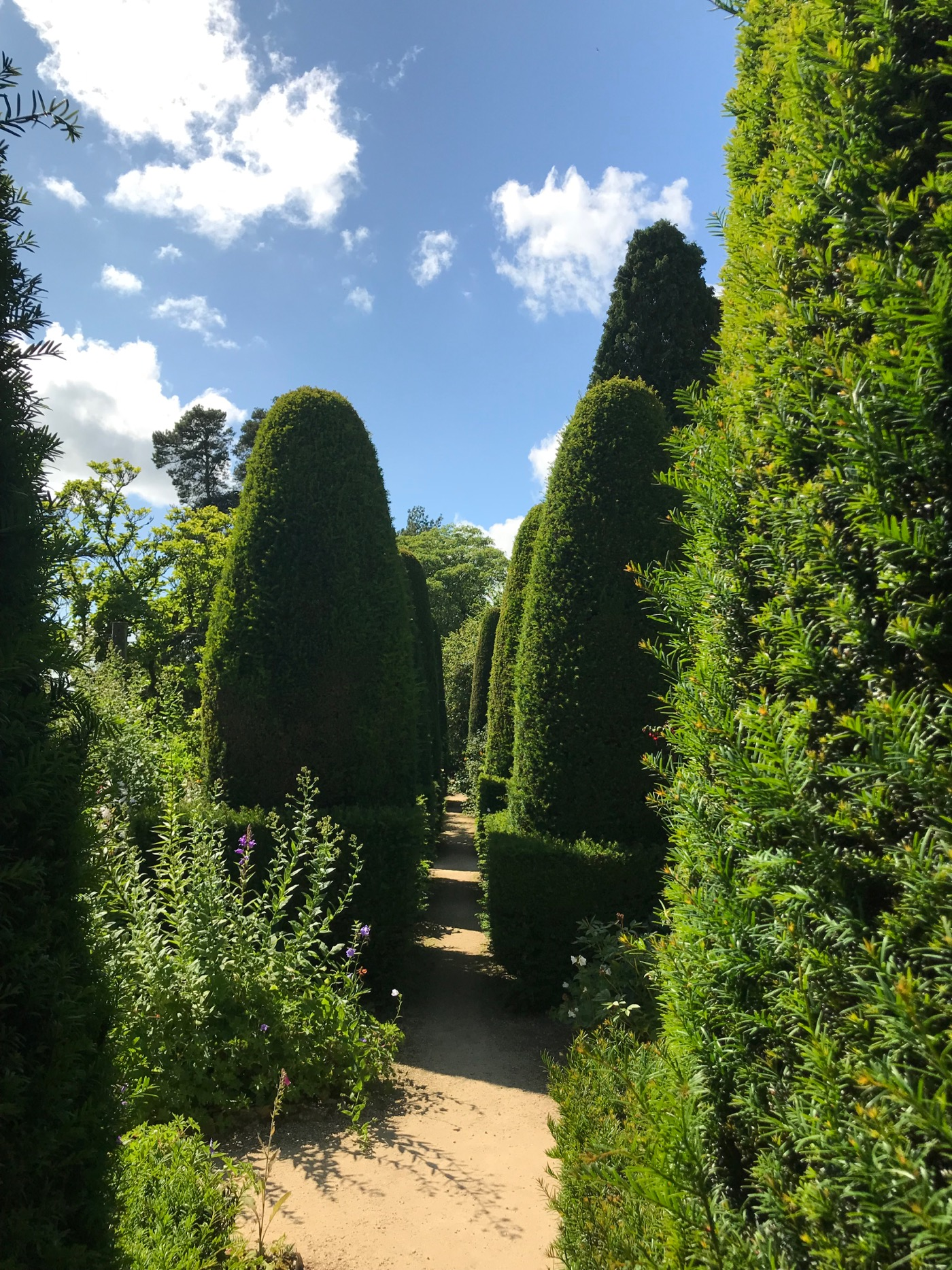 The famous Hidcote Pillar Garden. Topiary Yew trees and hedges. Cottage Garden ideas.