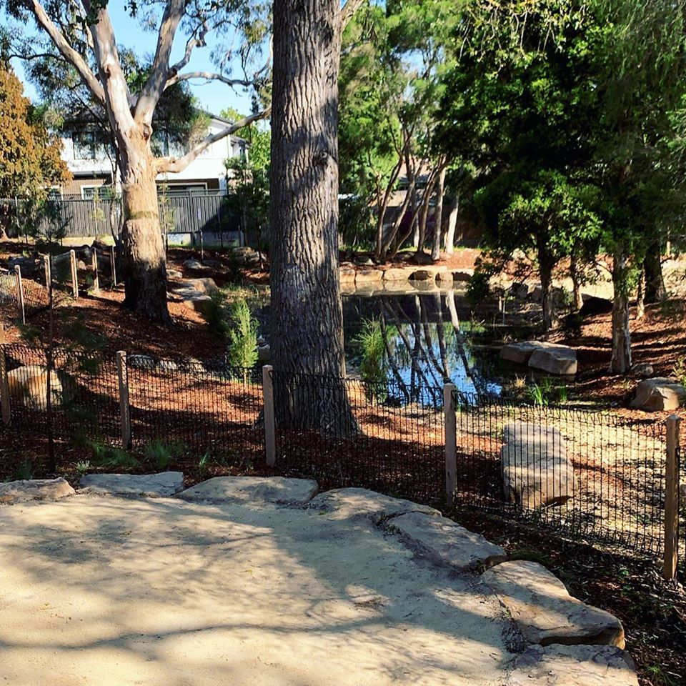 Wetlands require environmental protection during landscape construction.