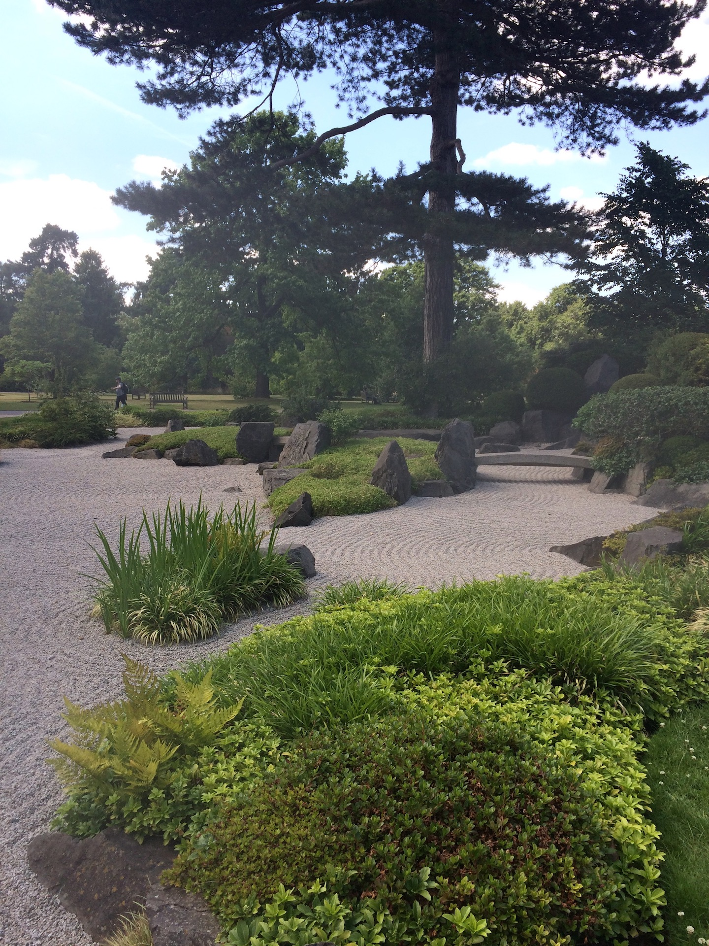 The 17 tonnes of aggregate or Zen gravel is raked weekly to maintain its patterns. Japanese gardens usually use a light colour of granite aggregate.