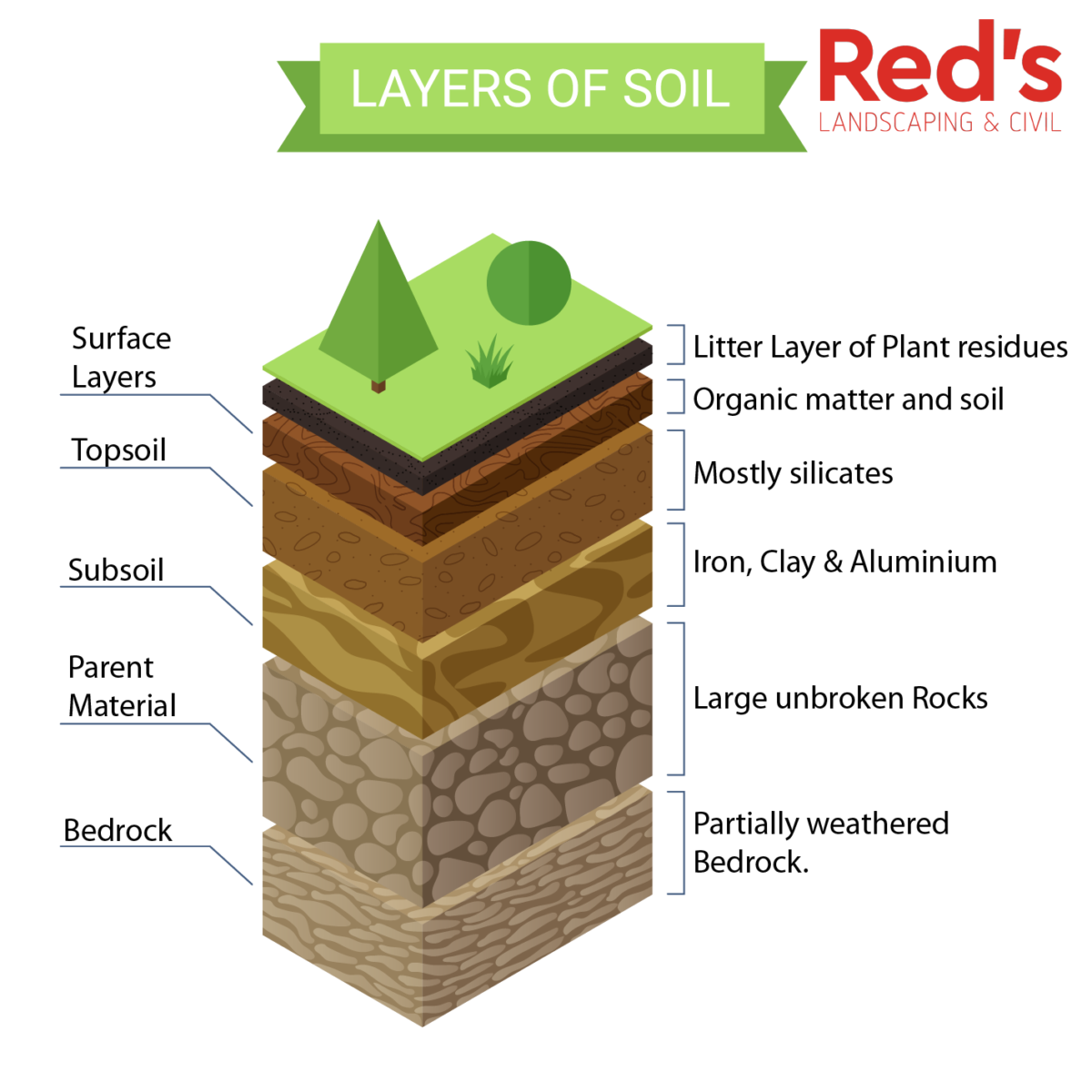 Soil Profile showing showing the topsoil layer.