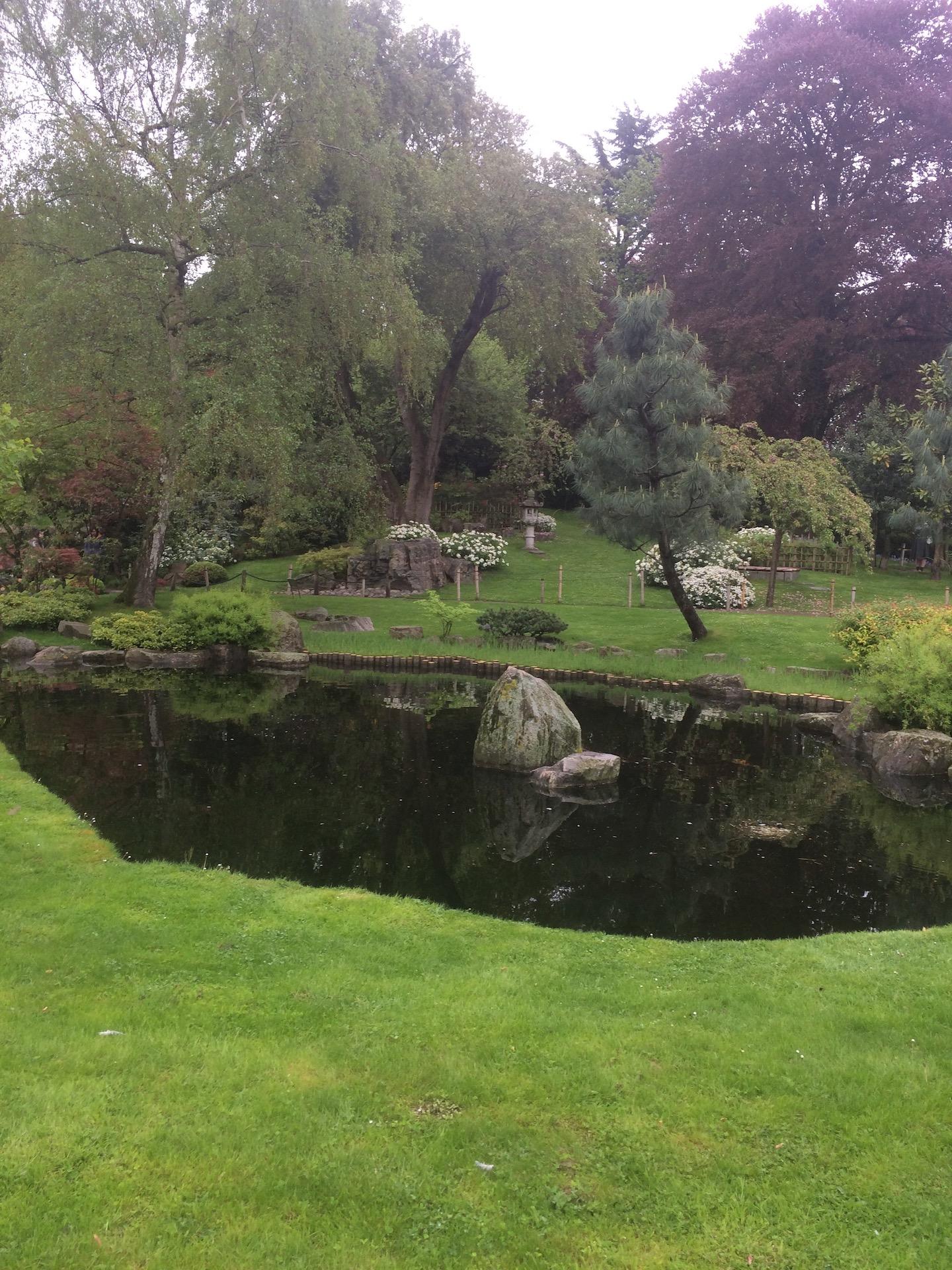 Tranquil Garden Pond