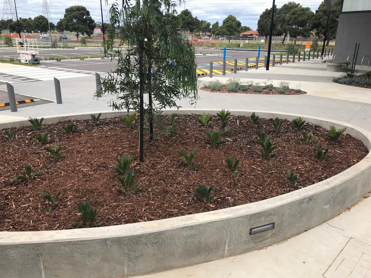 In-situ concrete raised garden bed