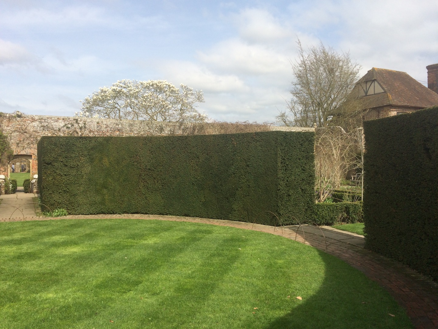 Classic English circular Yew hedge