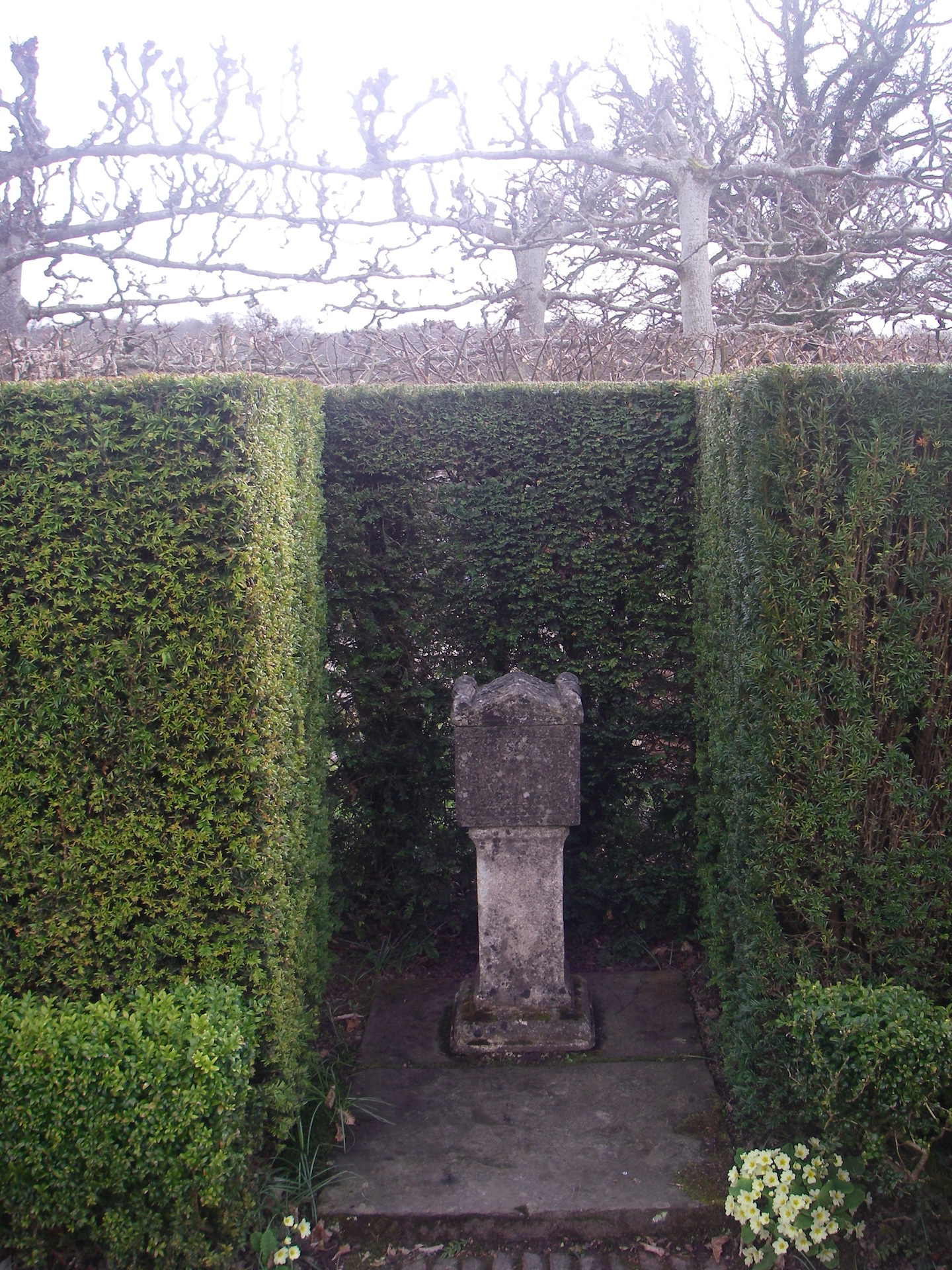 Yew Hedge garden Focal Point