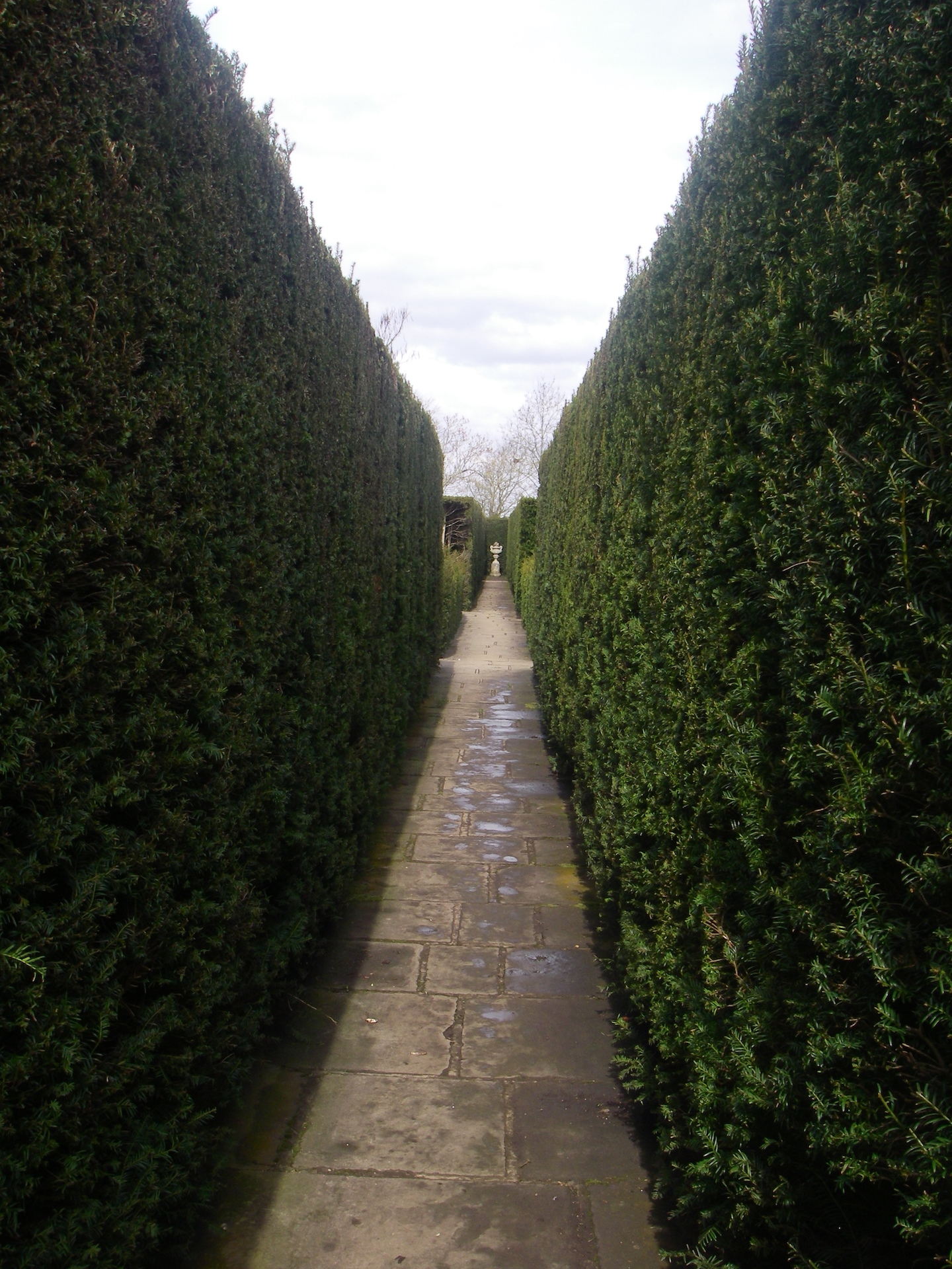 Yew Hedge focal point. Classic English Garden Design.