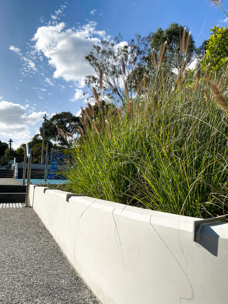 In-situ concrete retaining wall with native grasses at Balwyn Community Centre