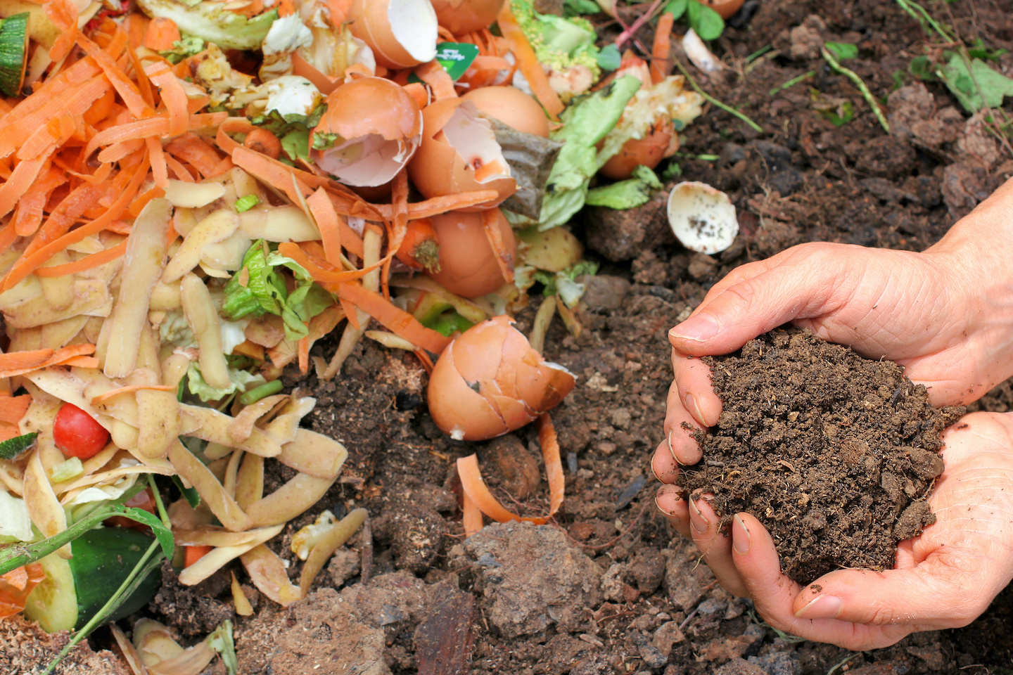Making Compost for your garden