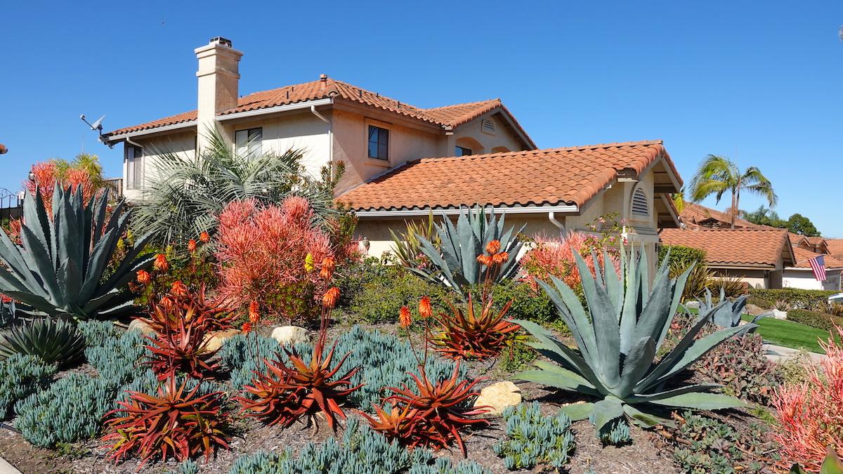 landscape design palm springs style