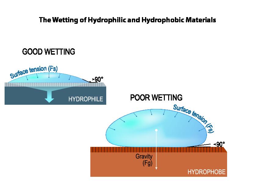 hydrophobic-hydrophilic