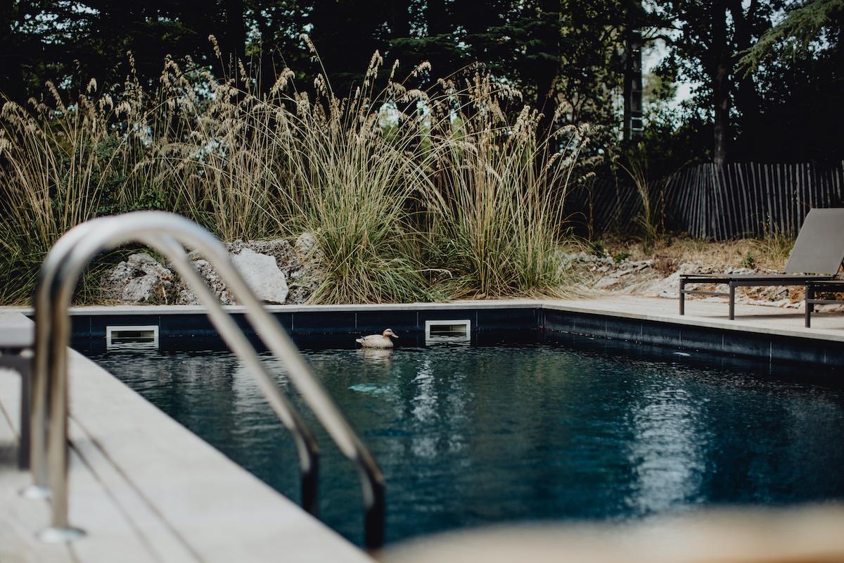Plunge Pool.