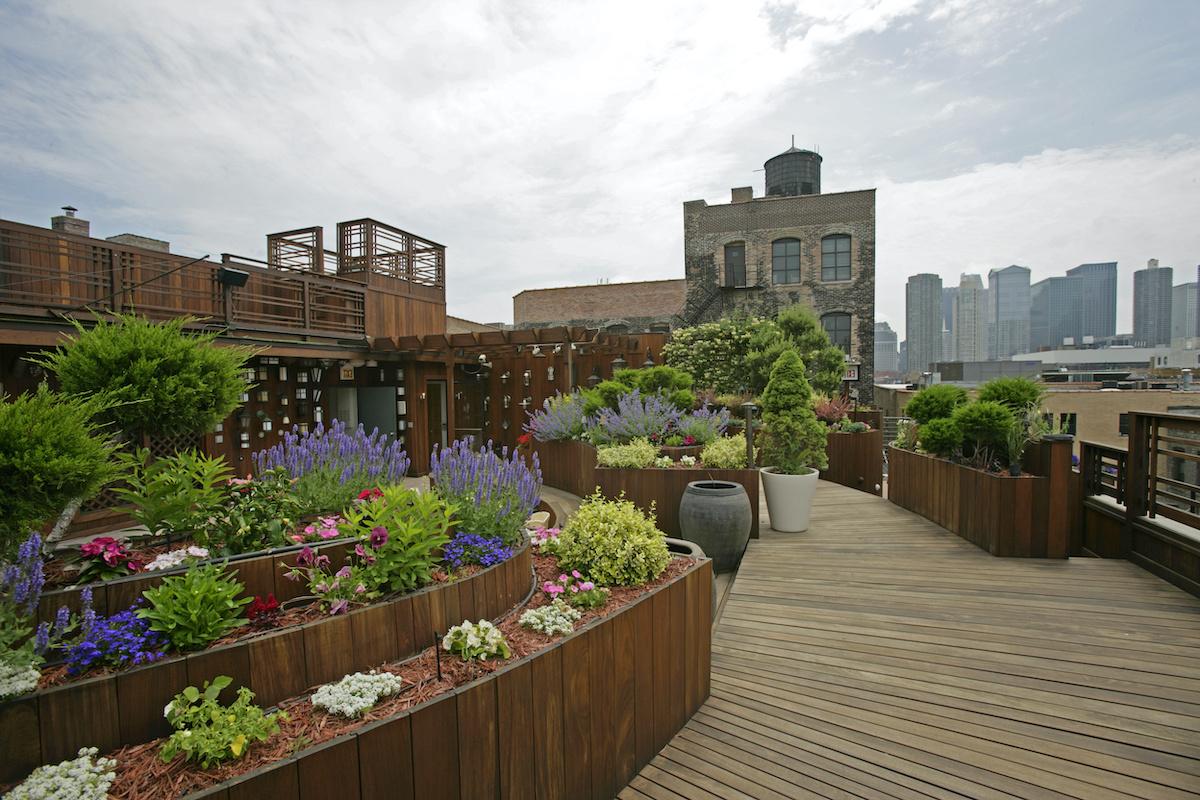 colourful cityscape rooftop garden